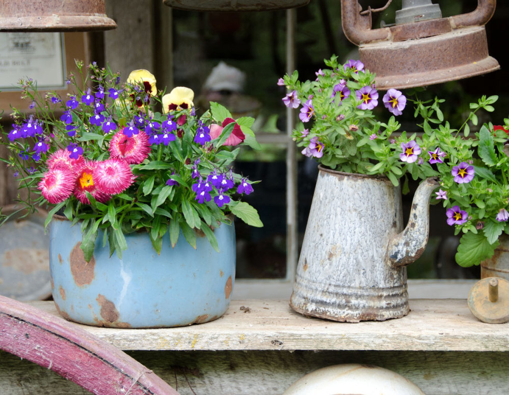Pots and Tubs - Seasonal Flower Mix